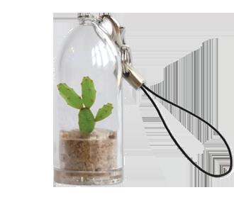 Mini-Kaktus Schlüsselanhänger